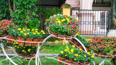 Photo of 7 Inspiring Garden Ideas